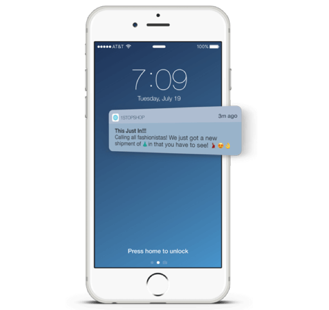 push notifications for Mobile Audience Engagement